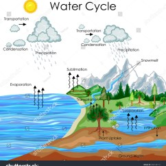Water Cycle Diagram With Explanation Gooseneck Trailer Education Chart Biology Stock Vector
