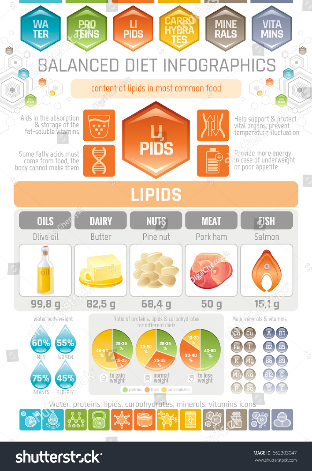 hight resolution of fat lipids diet infographic diagram poster water protein lipid carbohydrate mineral vitamin flat icon set