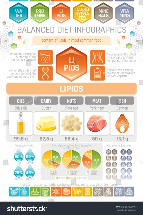 small resolution of fat lipids diet infographic diagram poster water protein lipid carbohydrate mineral vitamin flat icon set