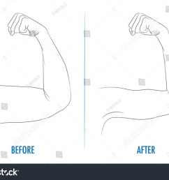 female biceps before and after sport arms showing progress after fitness bent arm with  [ 1500 x 1101 Pixel ]