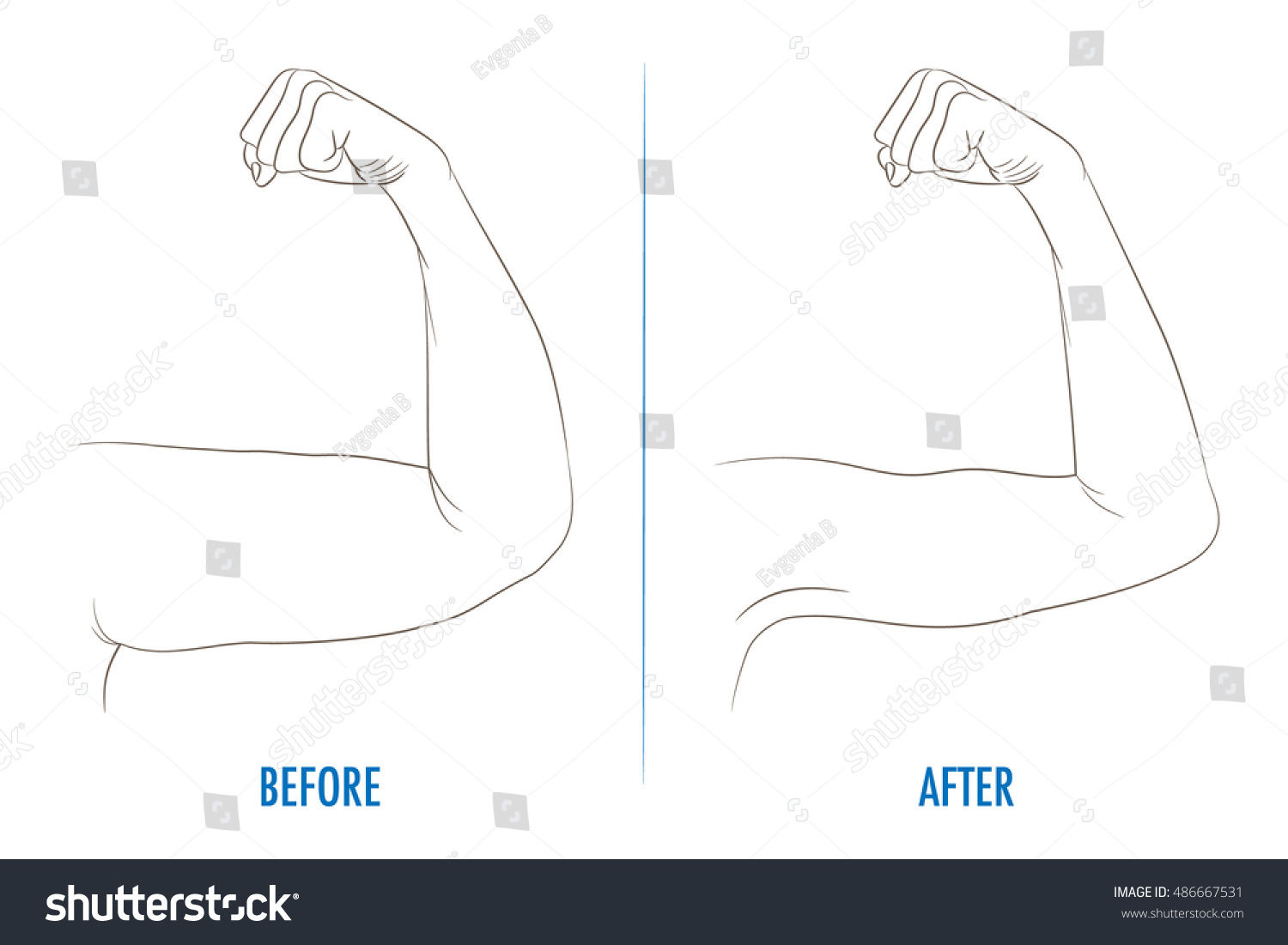 hight resolution of female biceps before and after sport arms showing progress after fitness bent arm with