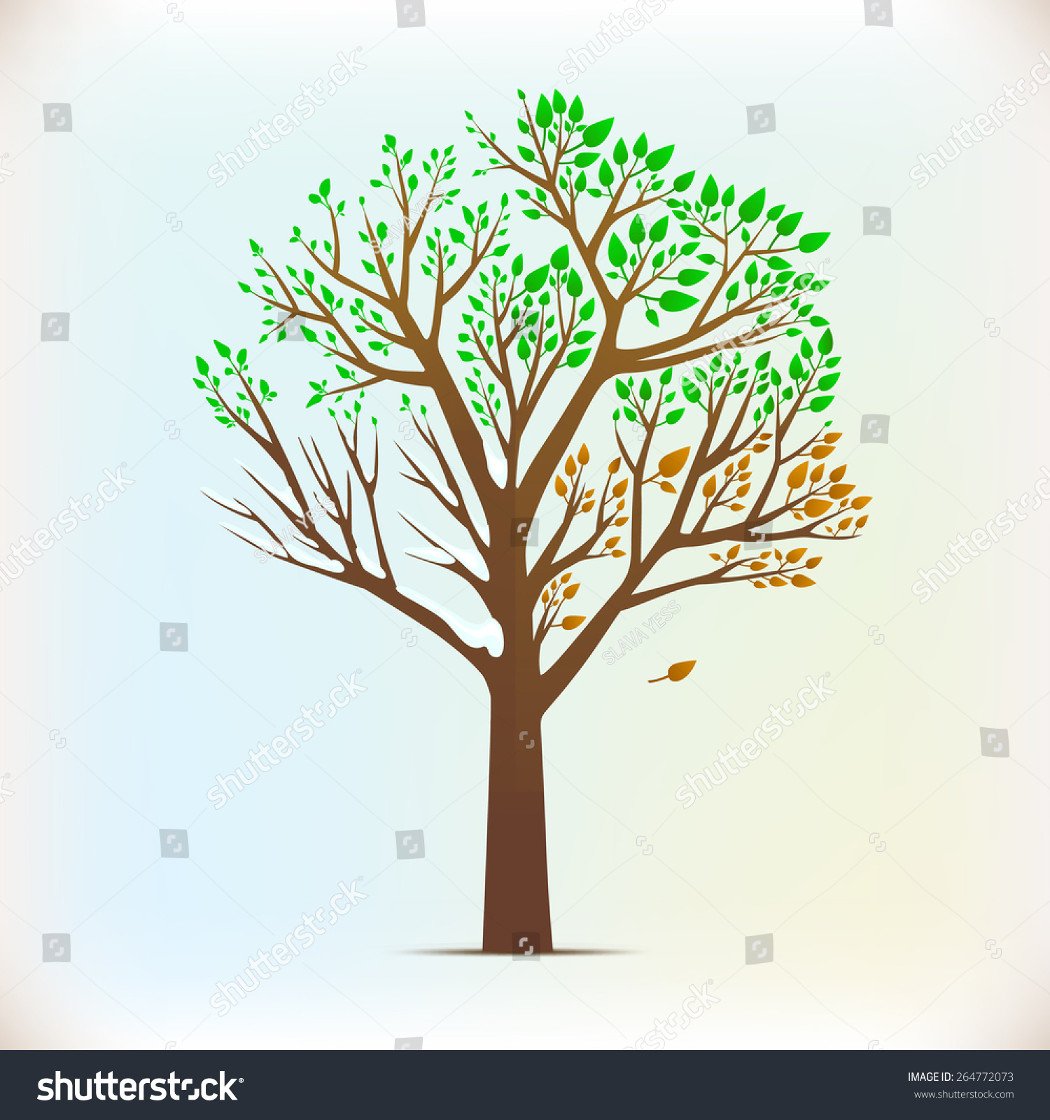 Four Seasons In One Tree Stock Vector Illustration