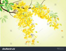 Golden Shower Flowers Ratchaphruek Yellow Watercolor Stock
