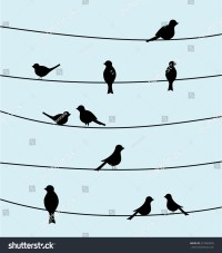Group Birds On Wires Black Color Stock Vector 227482930 ...