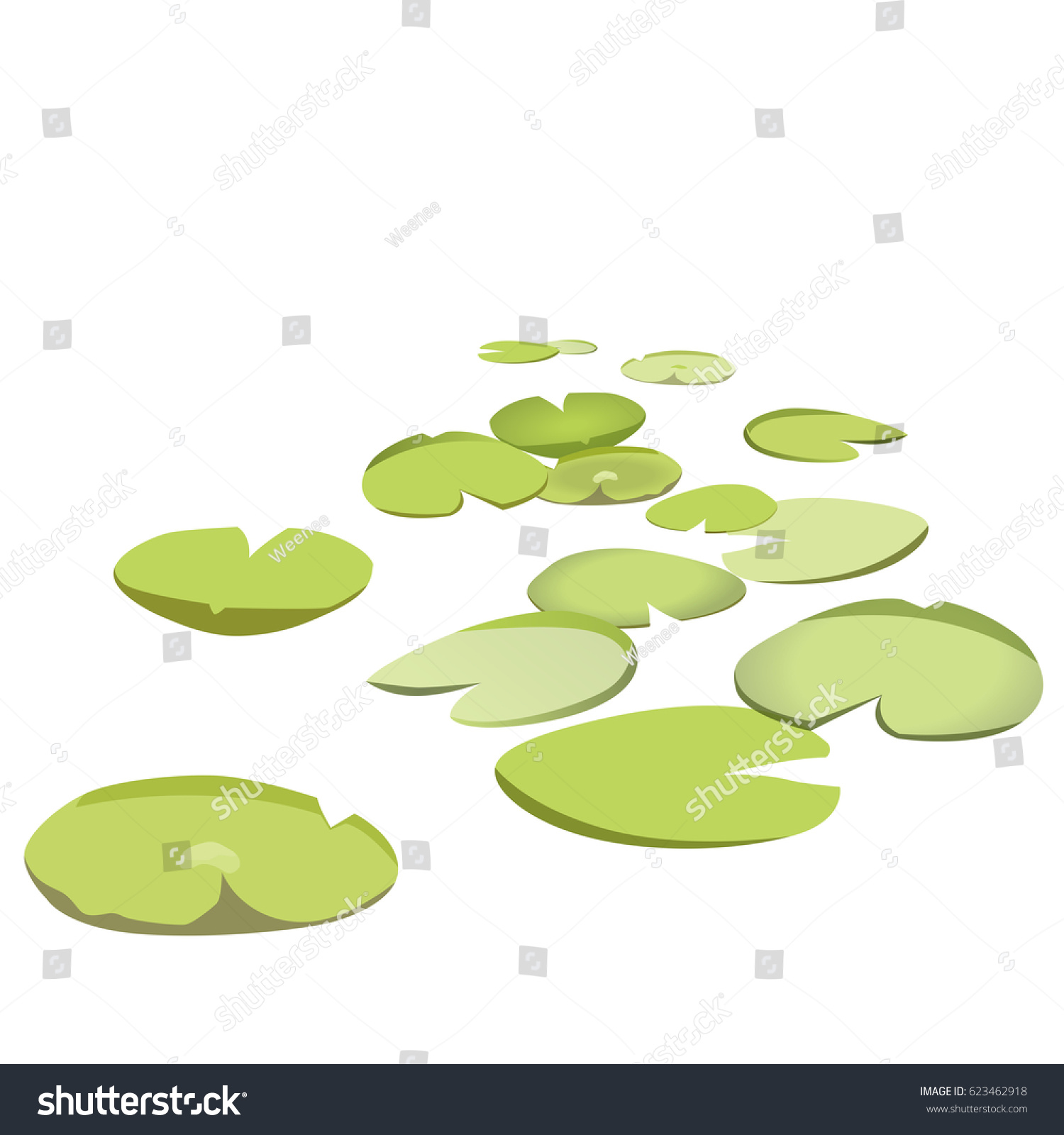 hight resolution of group vector water lilies floating on water surface green low poly water lily water