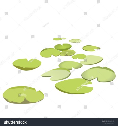 small resolution of group vector water lilies floating on water surface green low poly water lily water
