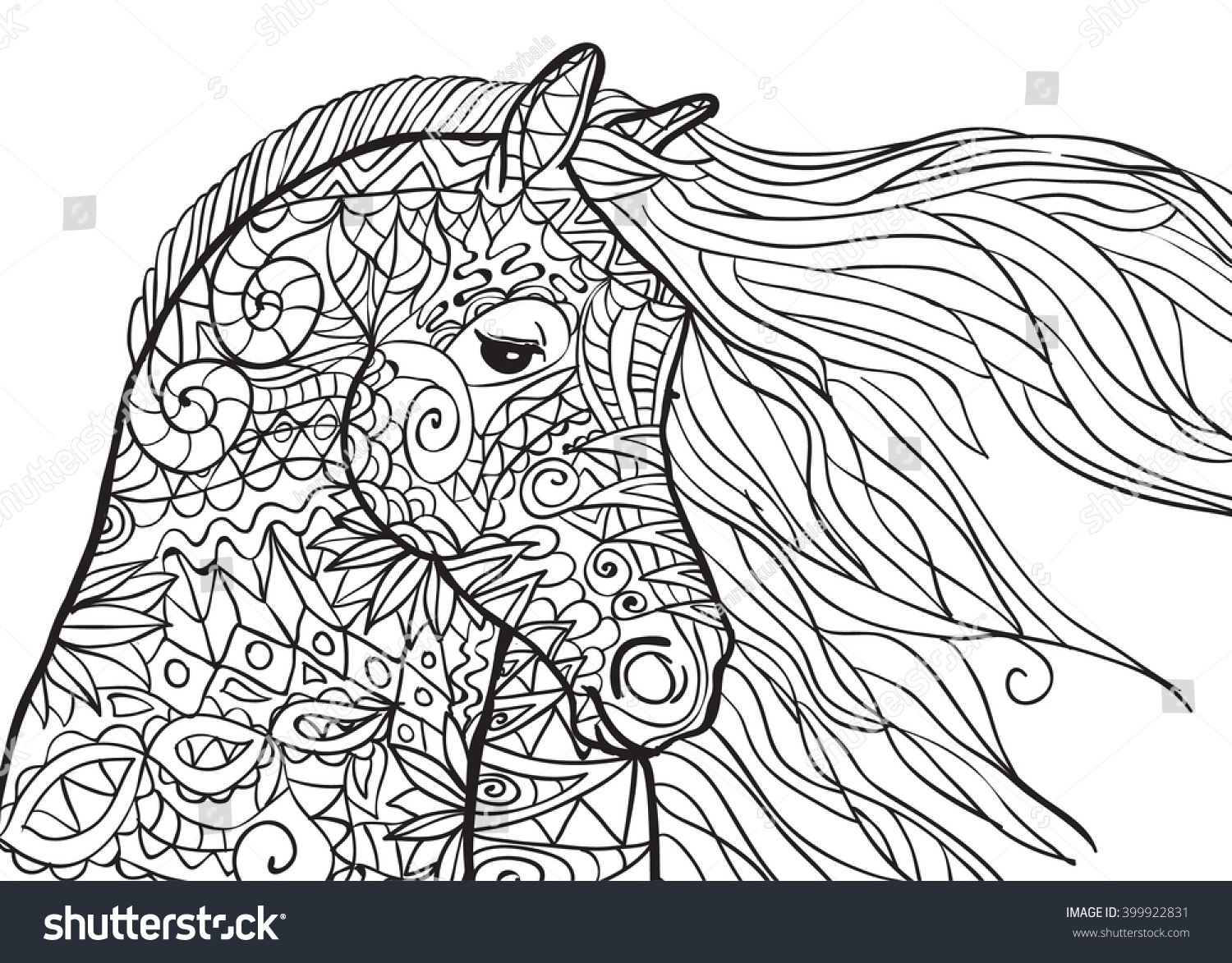 Hand Drawn Coloring Pages Horses Head Stock Vector 399922831