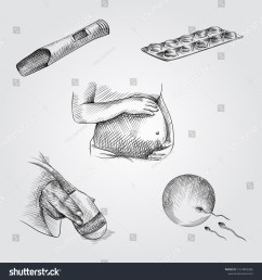 hand drawn pregnancy elements sketches set collection of pregnant woman belly pregnancy test  [ 1500 x 1600 Pixel ]