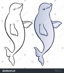 beluga whale cartoon happy smiling vector drawing shutterstock hand illustration official