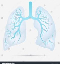 tb pneumonia diagram best wiring diagram tb pneumonia diagram [ 1425 x 1600 Pixel ]