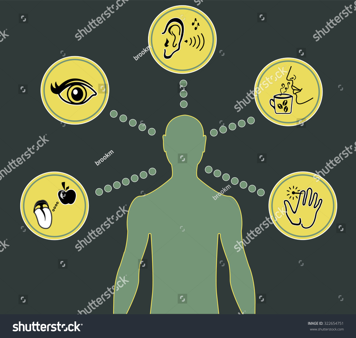 five senses diagram australian 3 pin plug wiring icon set of human stock vector