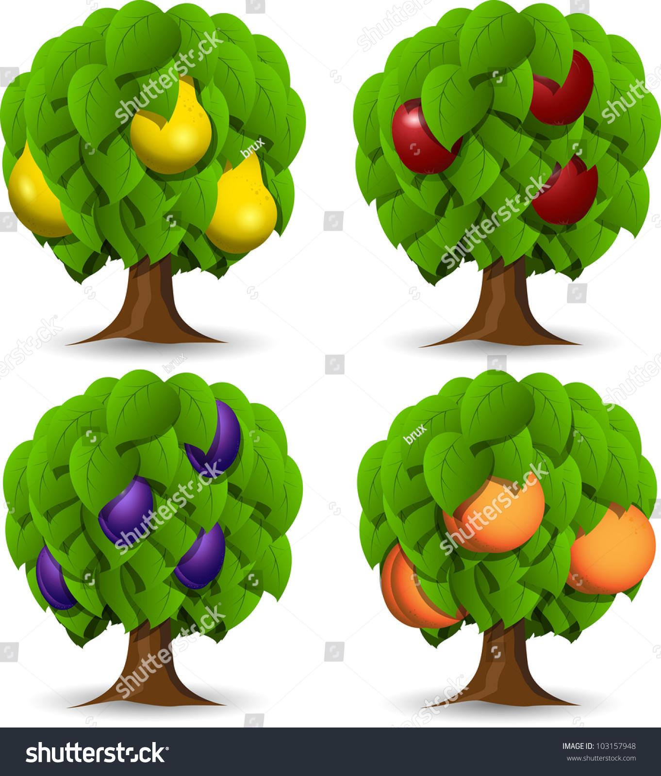Illustration Set Four Different Fruit Trees Stock Vector