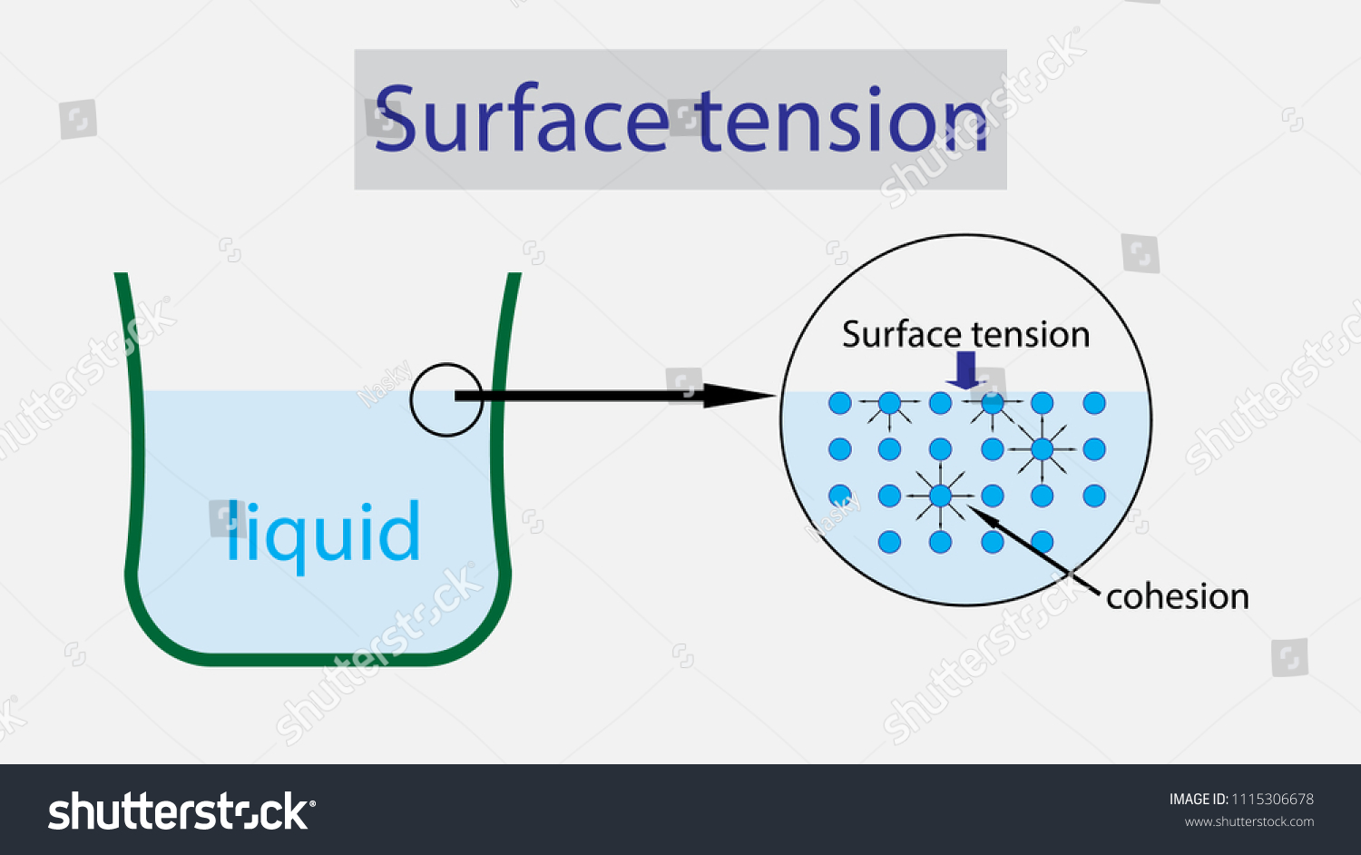 hight resolution of illustration of physics surface tension of liquid diagram
