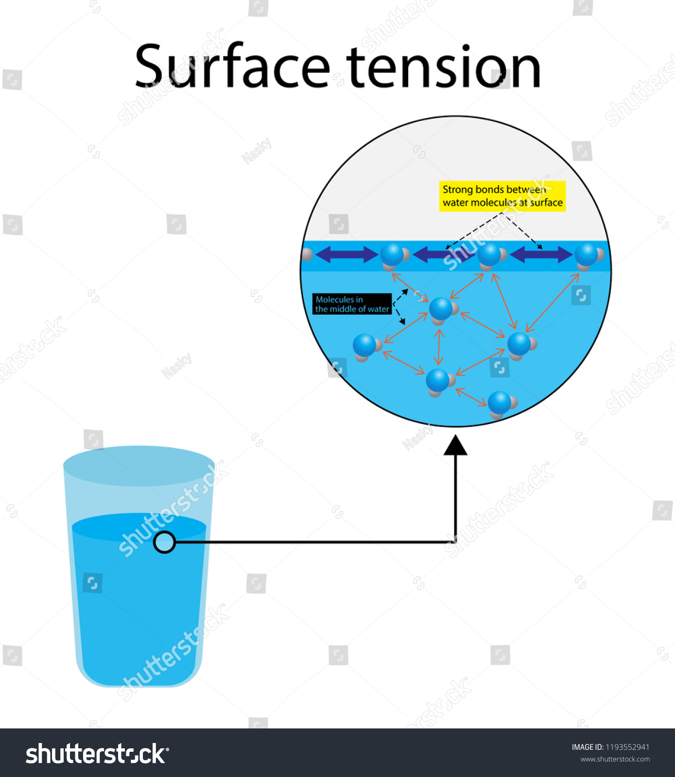 hight resolution of illustration of physics surface tension of water chemistry diagram