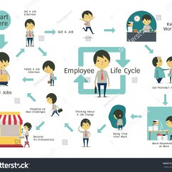 Employee Life Cycle Diagram Kids Skeletal System Infographics Illustration Simple Stock