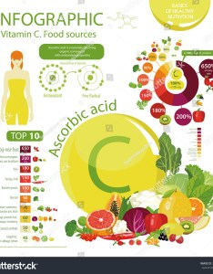 Top natural organic vegetables fruits and berries with the maximum content of vitamin  daily rate pie chart vector also infographics ascorbic acid food stock royalty free rh shutterstock