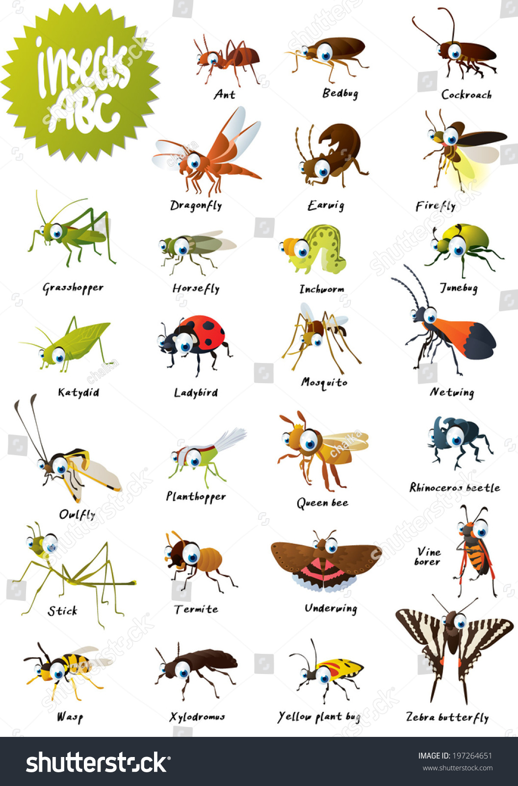 Insects Abc Stock Vector Shutterstock