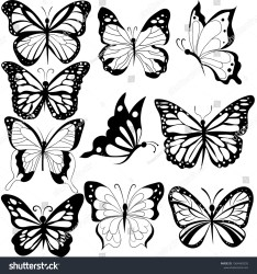 Insects Butterfly Outline Tattoo Coloring Vector Stock Vector Royalty Free 1364469293