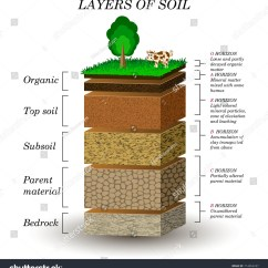 Soil Layers Diagram Simple Animal And Plant Cell Geology Clipart Clip Art Cliparts Co Gif
