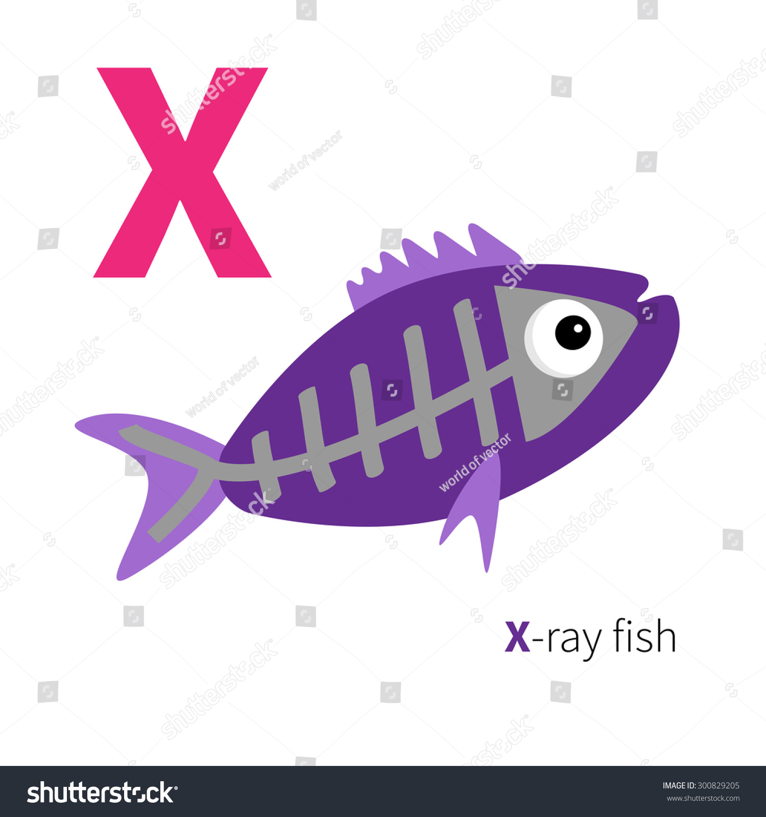 Letter X Xray Fish Zoo Alphabet Stock Vector