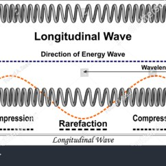 Mechanical Wave Diagram 1994 Ford F350 Radio Wiring Longitudinal Stock Vector 211513915 Shutterstock