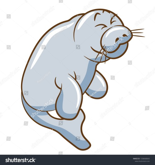small resolution of manatee vector clipart