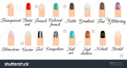 manicure types infographic nail
