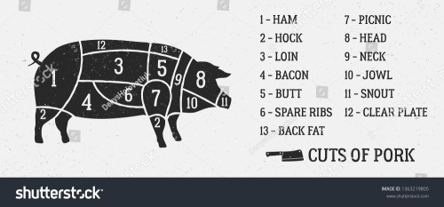small resolution of meat diagram cuts of pork pig silhouette isolated on white background vintage poster