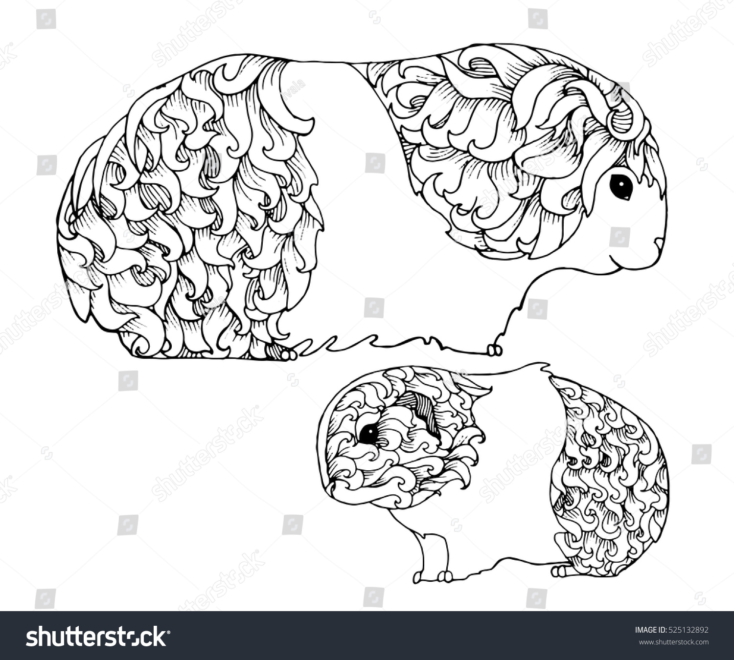 Mother Baby Guinea Pig Zentangle Page Stock Vector