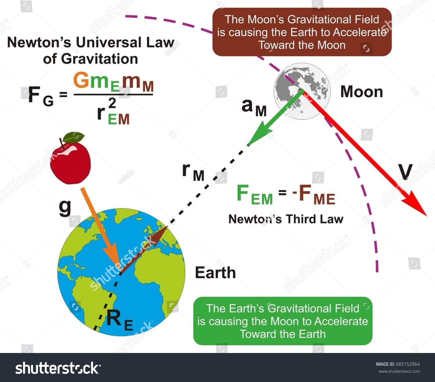 Universal Law Gravitation Infographic Diagram Formula