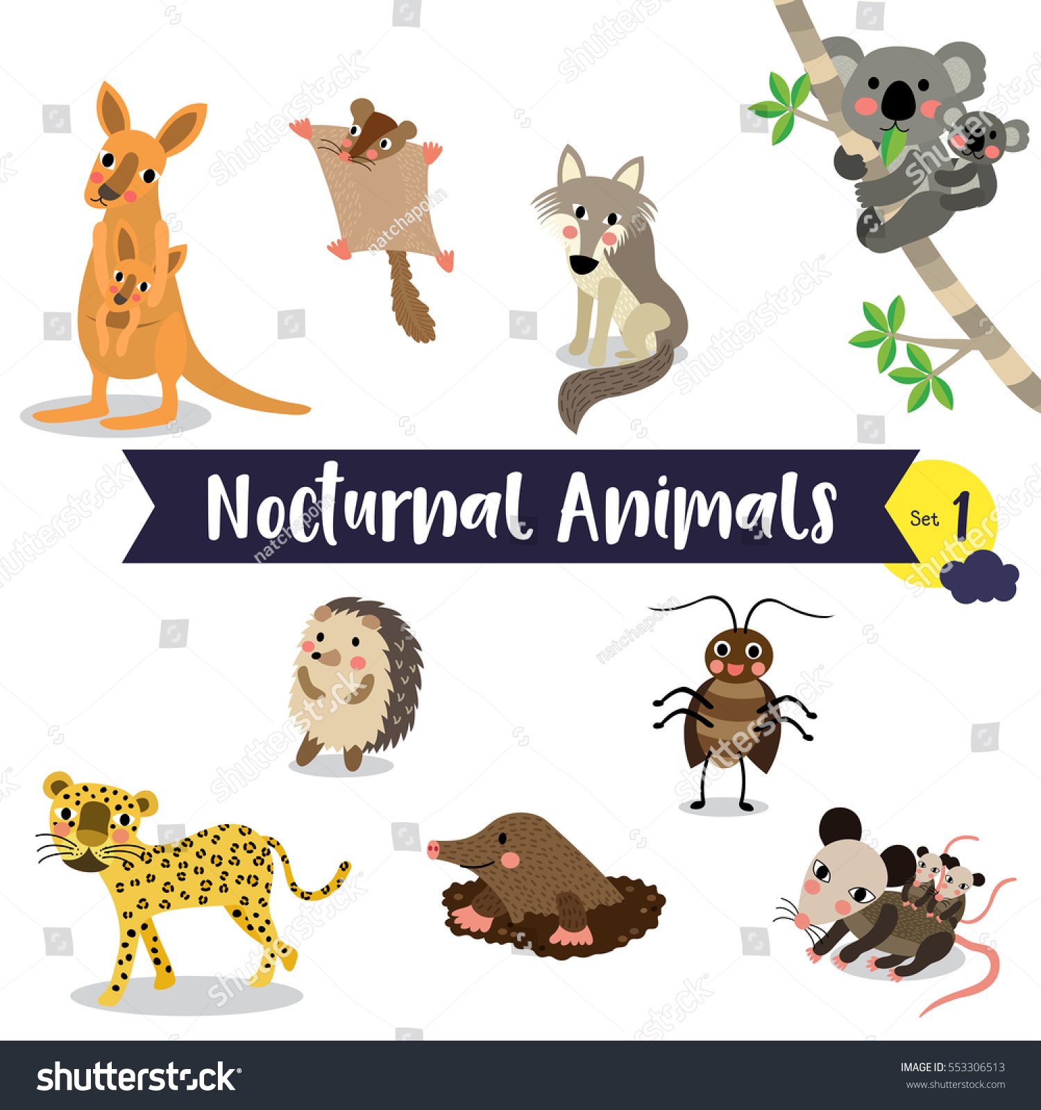Nocturnal Animals Cartoon On White Background Stock Vector