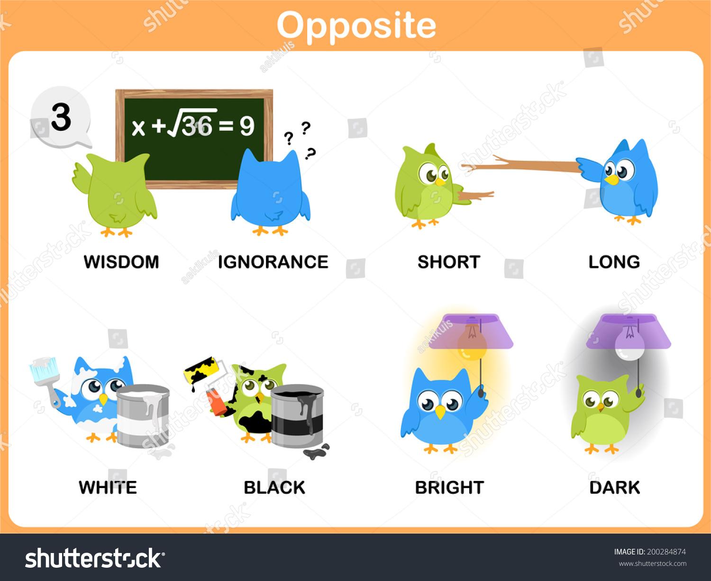 Opposite Worksheet Preschool