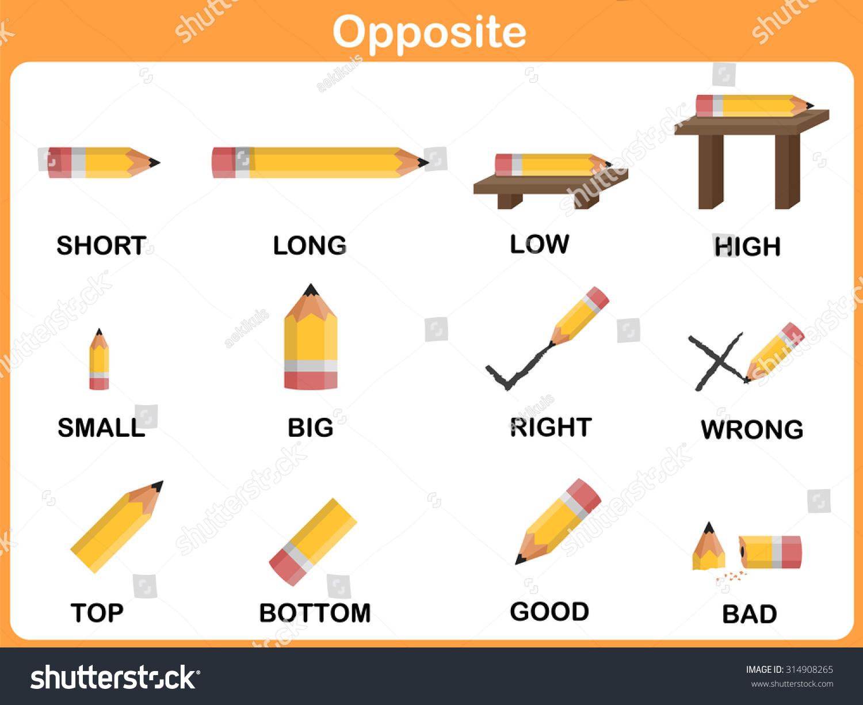 Opposite Word Preschool Worksheet Education