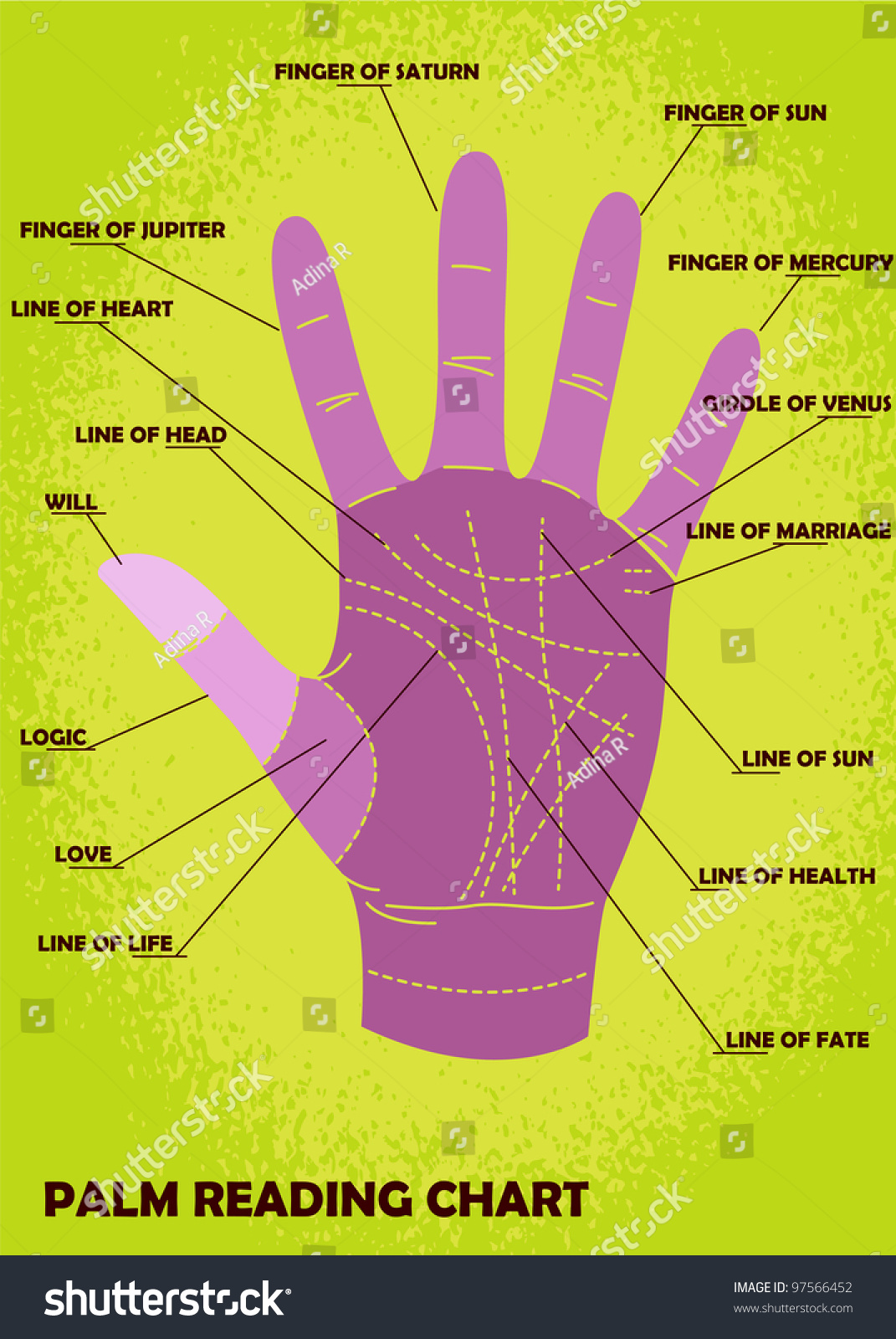 hight resolution of palm reading chart showing explanations