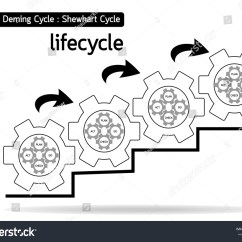 Pdca Cycle Diagram Visio Rack Template Plan Do Check Act Lifecycle Quality