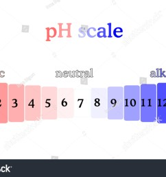 ph scale diagram with corresponding acidic or alcaline values litmus paper color chart colorful  [ 1500 x 1000 Pixel ]