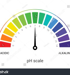 ph scale indicator chart diagram acidic alkaline measure ph analysis vector chemical scale value test  [ 1500 x 1146 Pixel ]