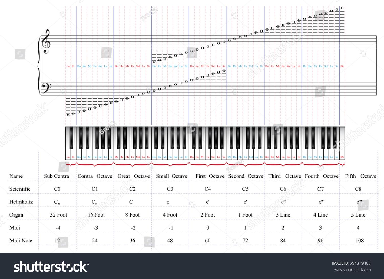 88 key piano keyboard diagram chicken wing bones keys by octaves stock vector 594879488