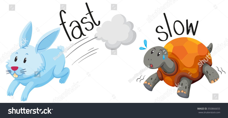 Rabbit Runs Fast Turtle Runs Slow Stock Vector