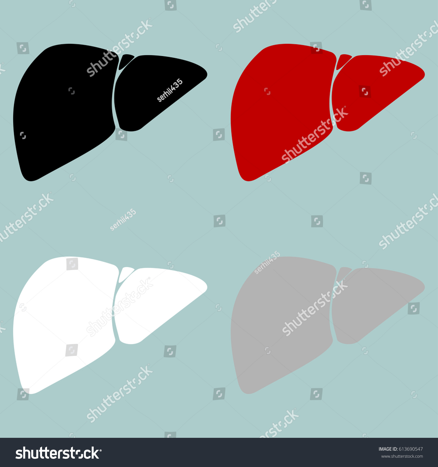 hight resolution of red black grey white liver hepar icon set icons