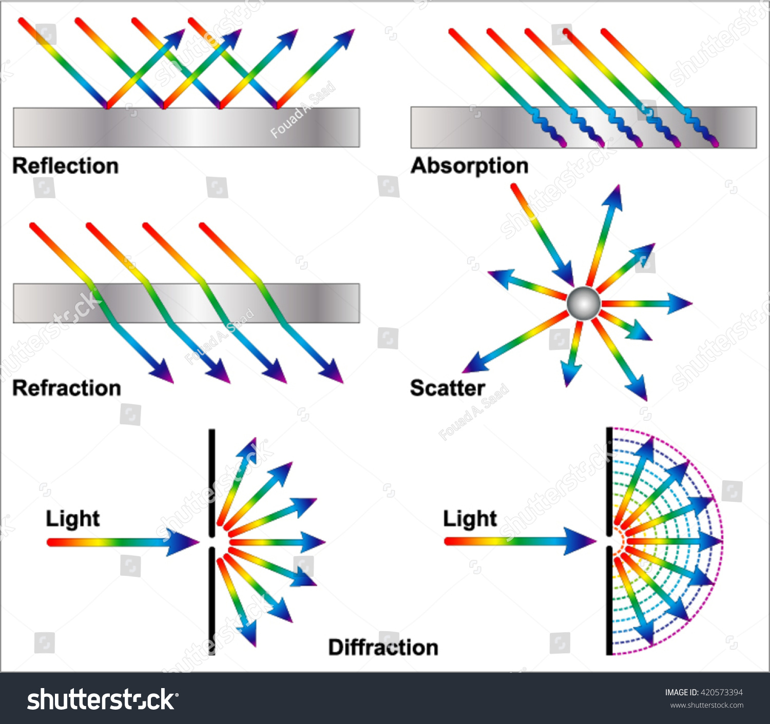 light wave diffraction diagram cartoon plant cell reflection refraction stock vector 420573394