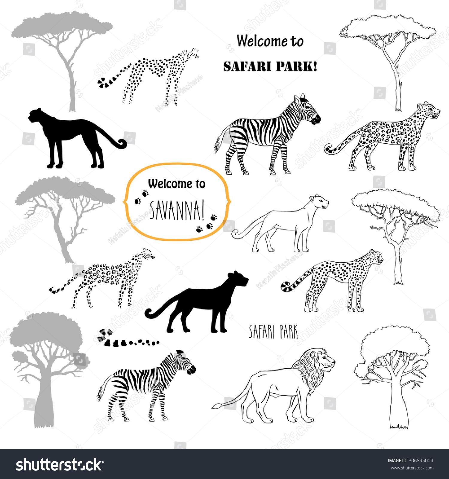 Savanna Animals Set Hand Drawn Vector Stock Vector