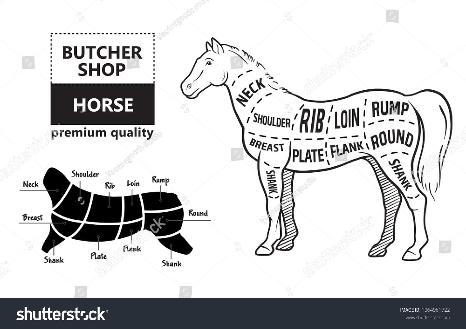 hight resolution of scheme of cutting horse meat with cutting lines design for butcher shop banner