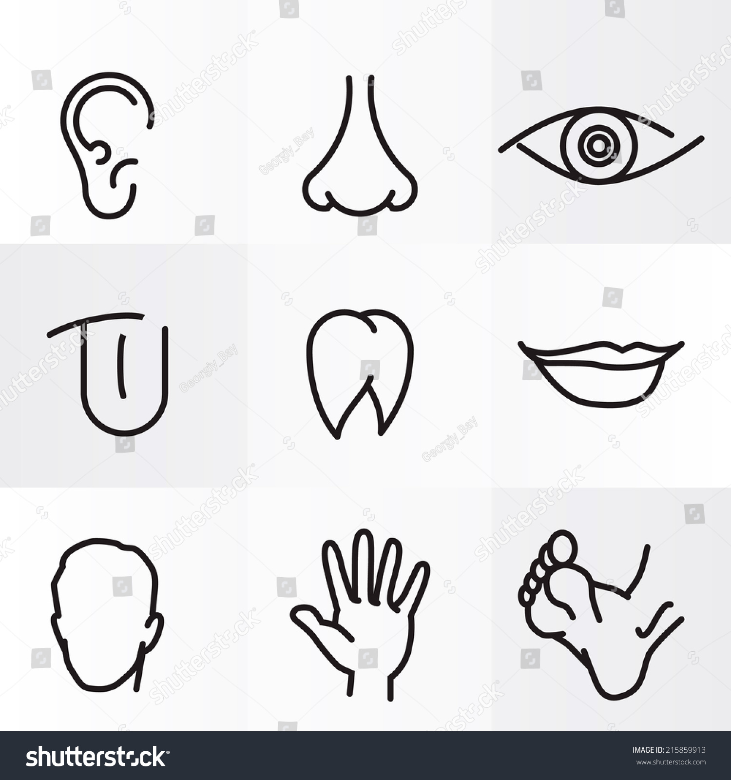 Set Icons Flat Parts Human Body Stock Vector
