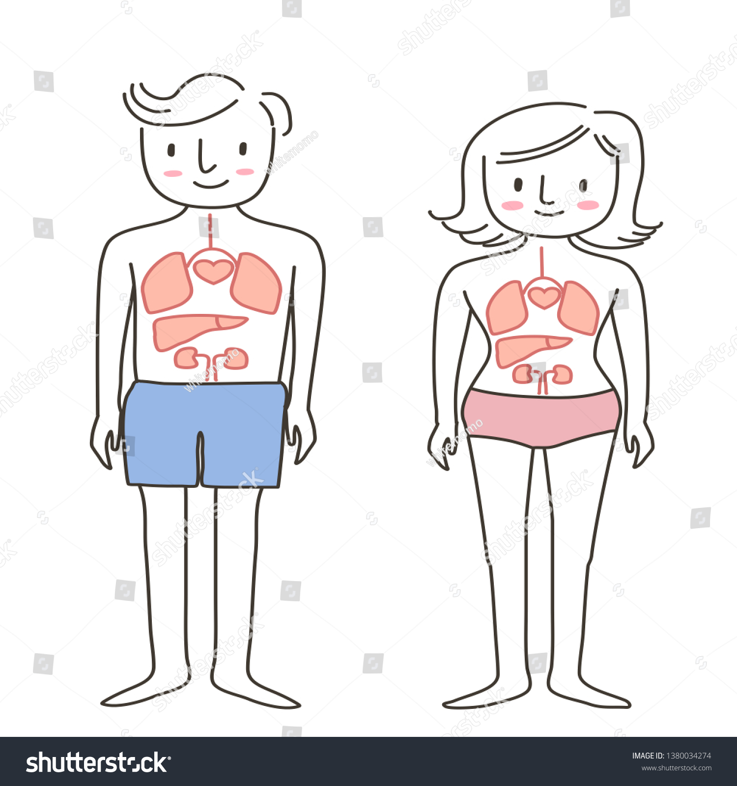hight resolution of set of human body diagram of man and woman healthy life concept with front view