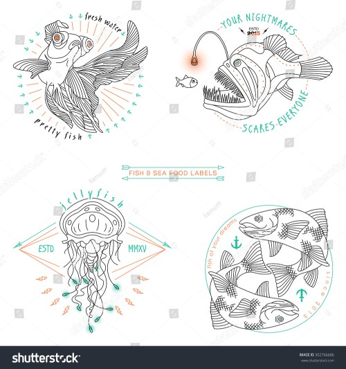 small resolution of set of vintage thin line fish and sea food labels badges retro vector design