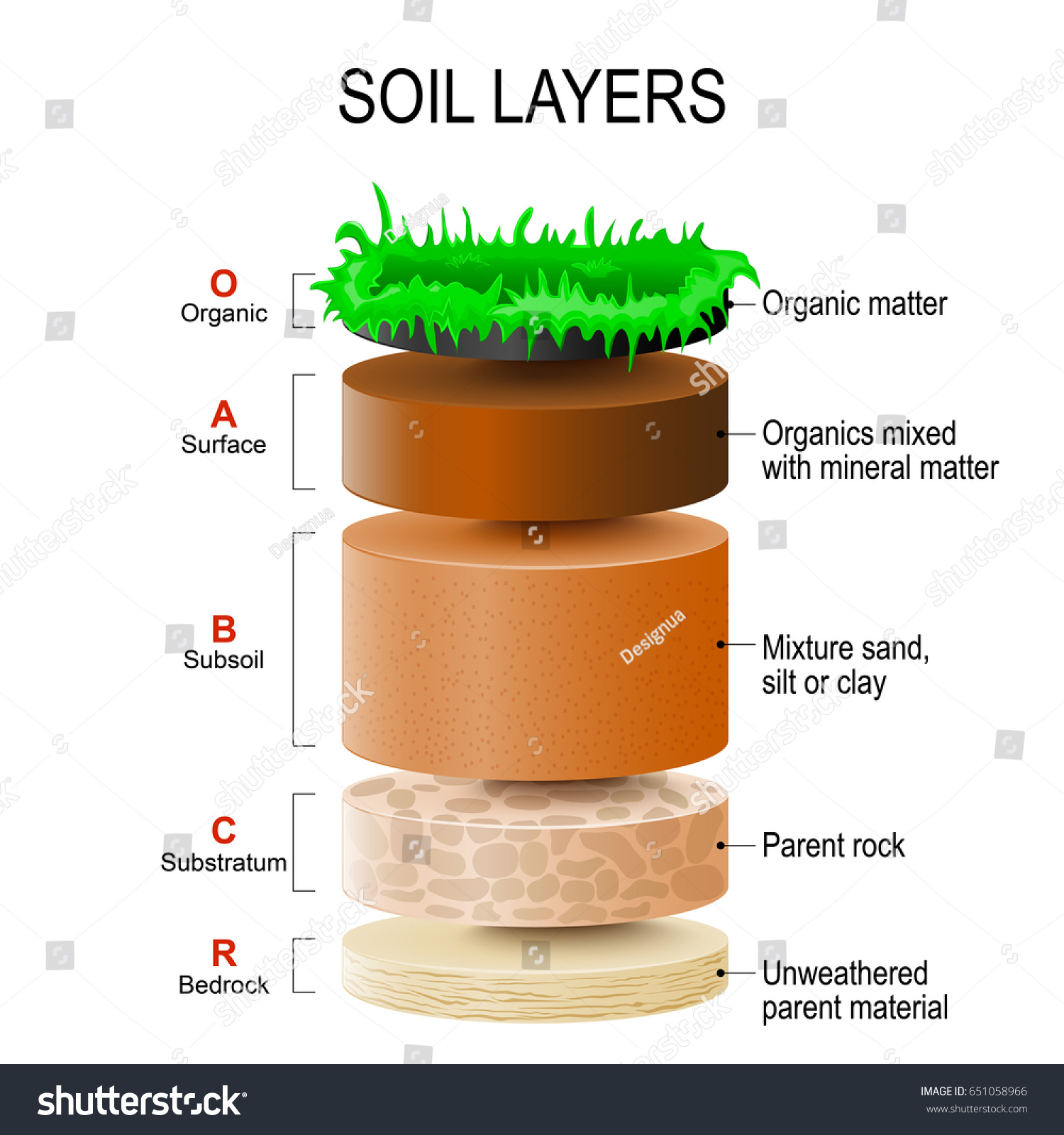 soil profile diagram of michigan 2 pin led flasher relay wiring layers mixture plant residue stock vector
