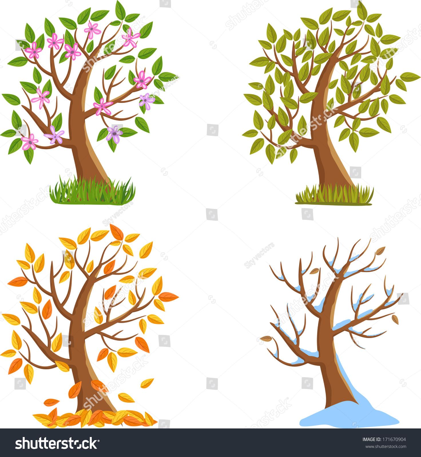 Spring Summer Autumn Winter Season Tree Stock Vector