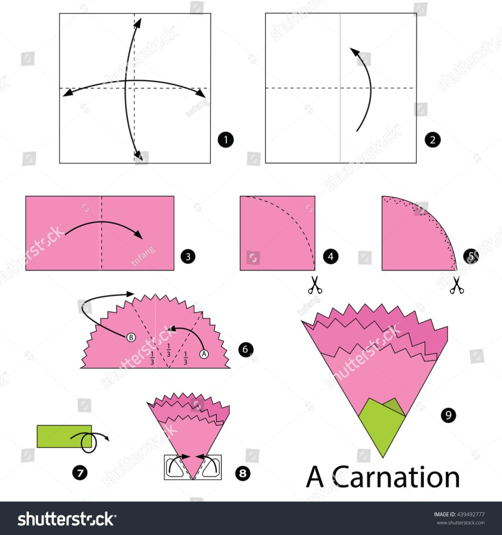 medium resolution of step by step instructions how make stock vector royalty free paper carnations origami carnation diagram