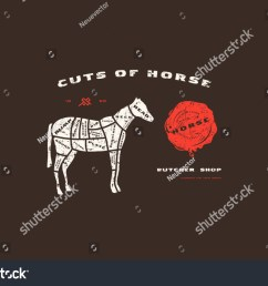 stock vector horse cuts diagram in flat style design with rough texture color print [ 1500 x 1090 Pixel ]